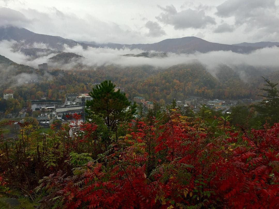 Every day in #Gatlinburg is somehow more beautiful than the last.