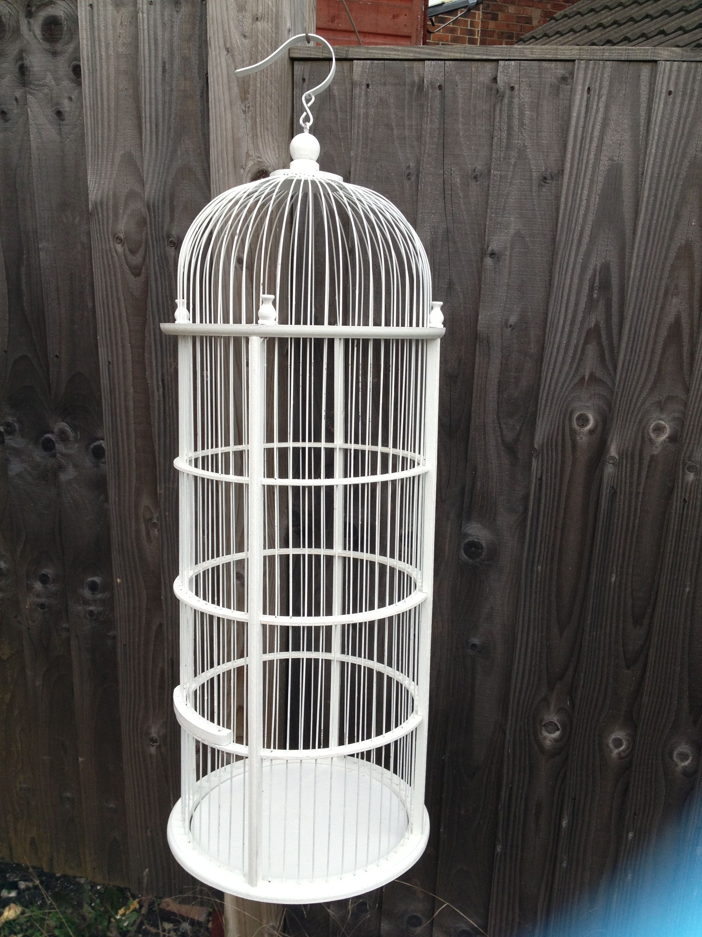 large decorative bird cages My lovely birds