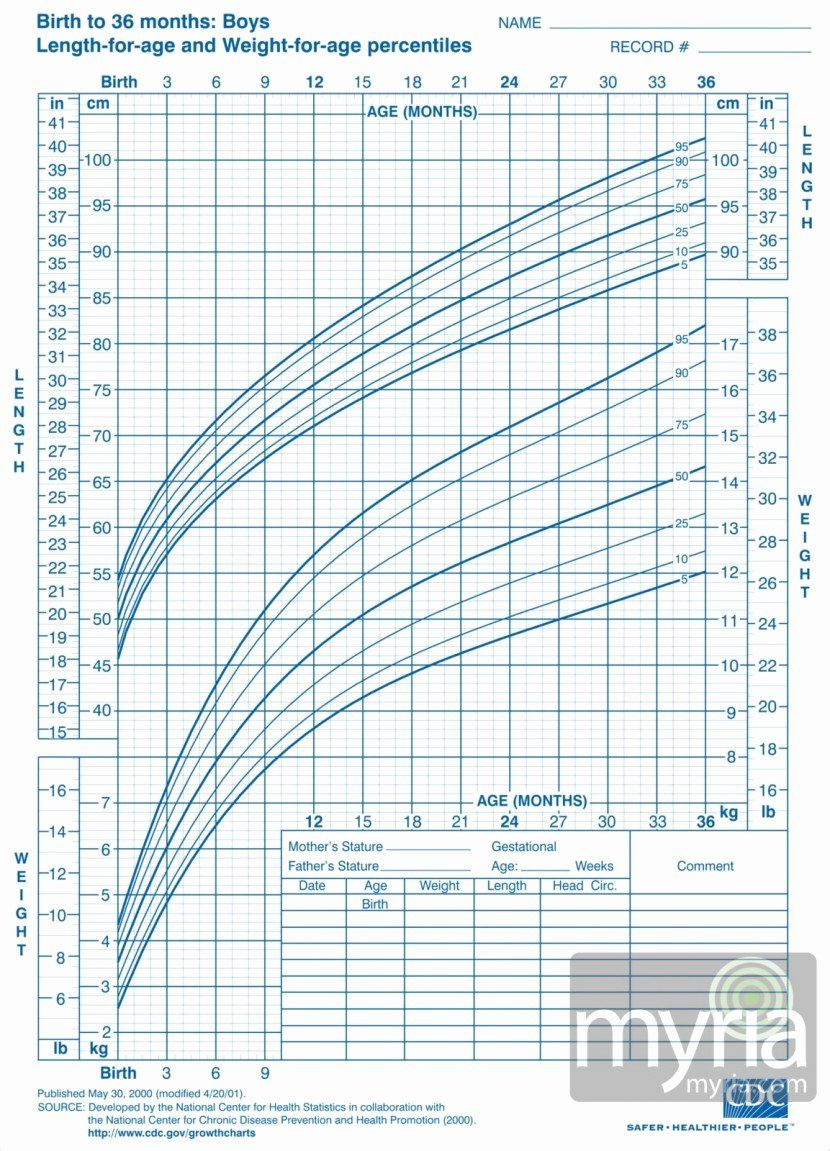 Boys Height Weight Chart Best Of Baby And Toddler Growth Charts For Boys Myria Toddler Growth Chart Boys Growth Chart Baby Boy Growth Chart