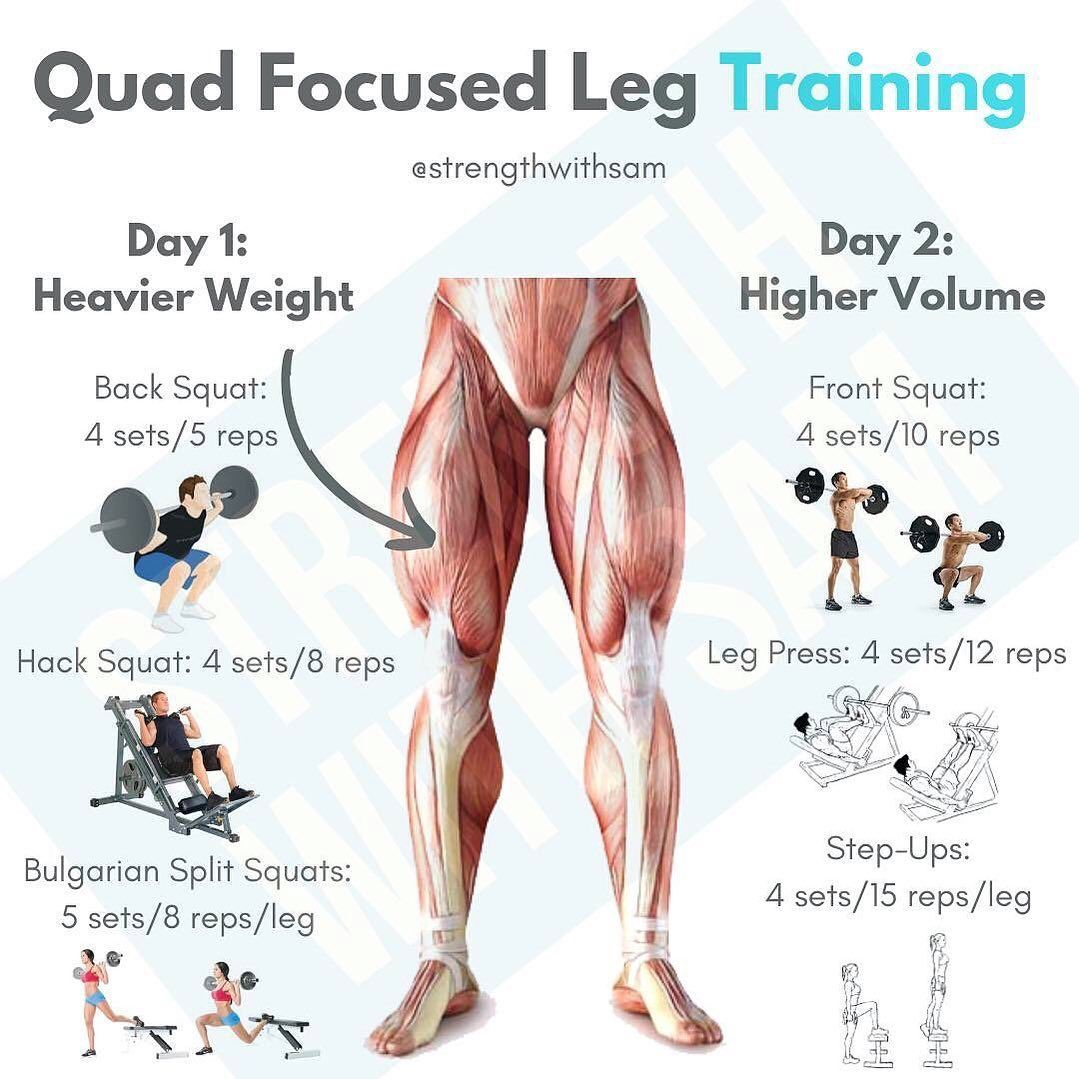 QUAD focused leg training 🔥📈 try this starter plan if you're struggling with leg strength. —————————...
