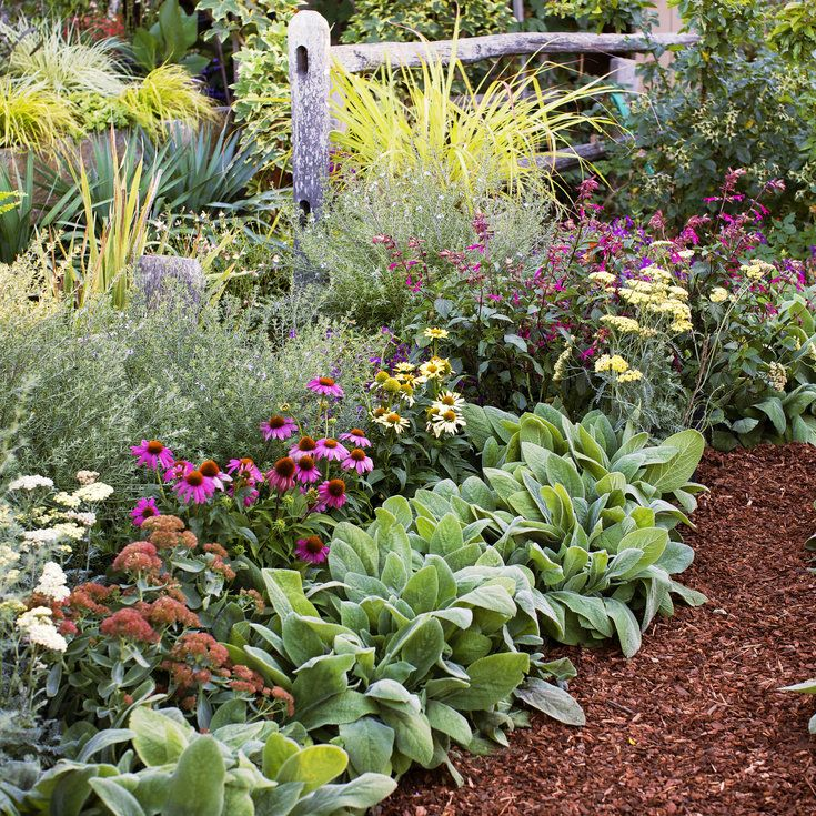 4 easy care flower beds perennials flower and gardens all star perennials 4 easy care flower bed ideas sunset mightylinksfo