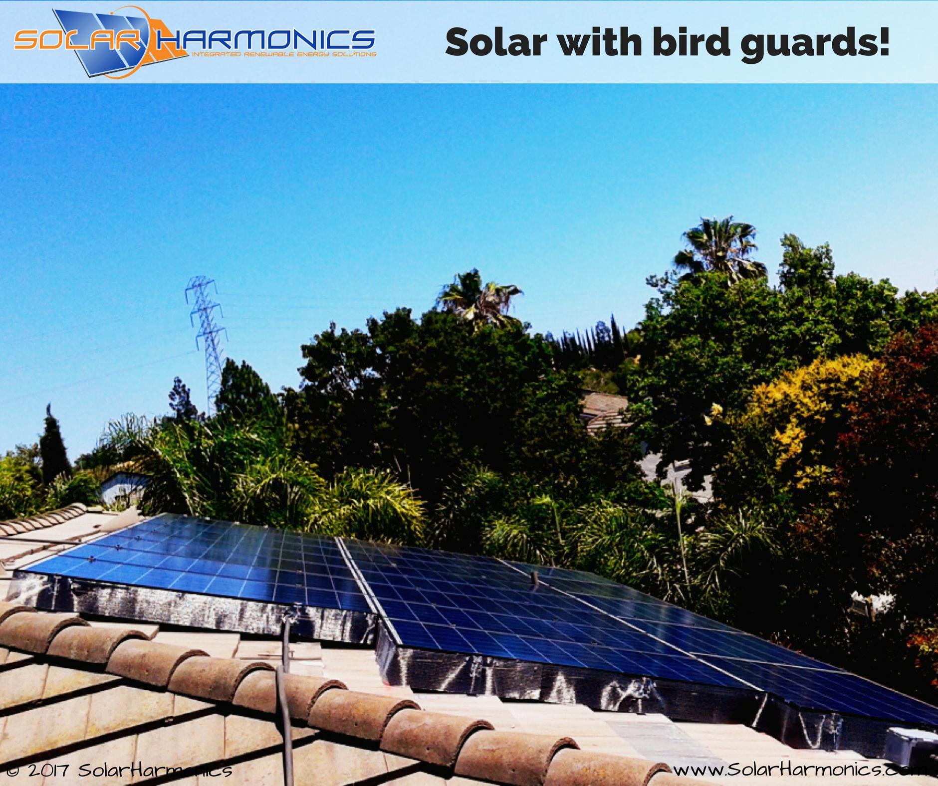 Solar With Bird Guards Antioch Panel Installation Solar Installation Solar Solar Projects