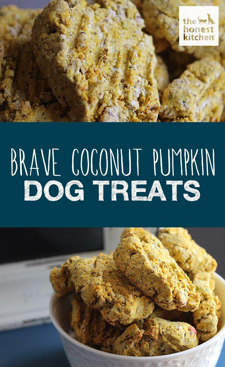 Pet Brave Coconut Pumpkin Dog Treats Dog Biscuit Recipes Dog