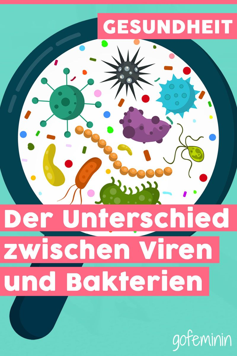 Viren Und Bakterien Die Wichtigsten Unterschiede