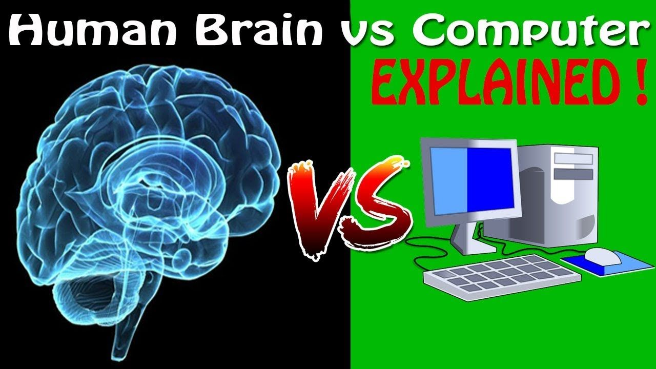 brain vs computer The brain-computer analogy have you ever thought that the computer is the perfect analogy for the workings of the brain even if you haven't, doesn't it just feel right short-term memory is like memory in a computer, both can only hold a limited amount of information at one time and that information is used for active processing.