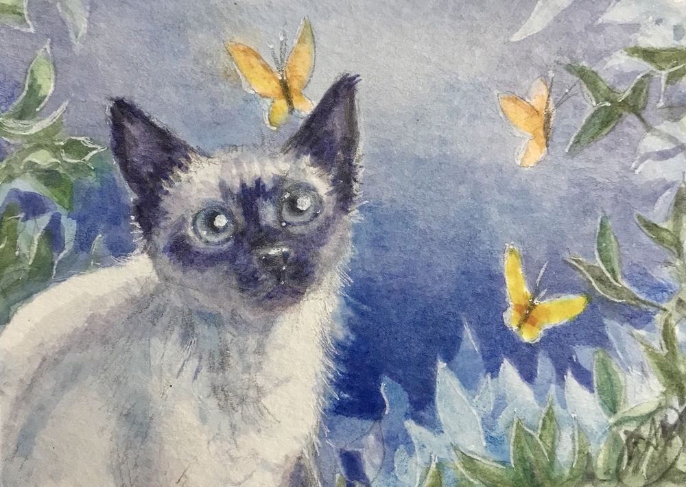 SOLD! ACEO Kitten watercolor painting Original Cat