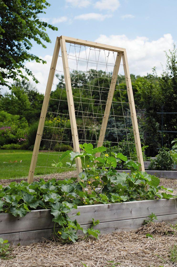 Twine vegetable garden trellis frame is made from 1 3 8 for Vegetable garden trellis designs