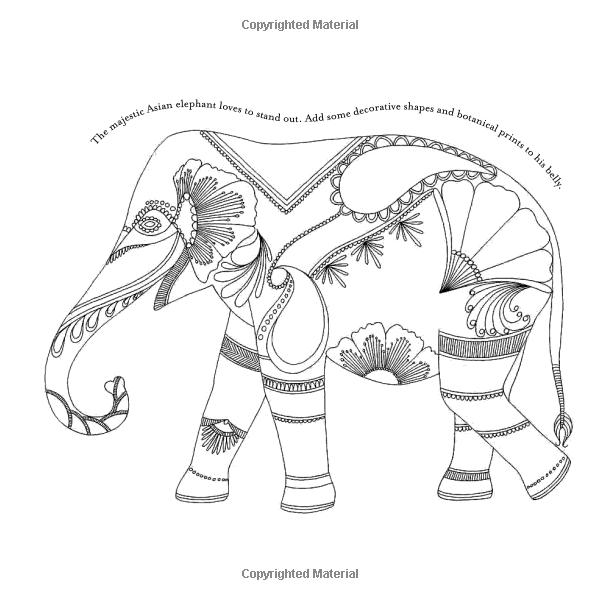 animal kingdom coloring pages | Animal Kingdom: Color Me, Draw Me (A Millie Marotta Adult ...