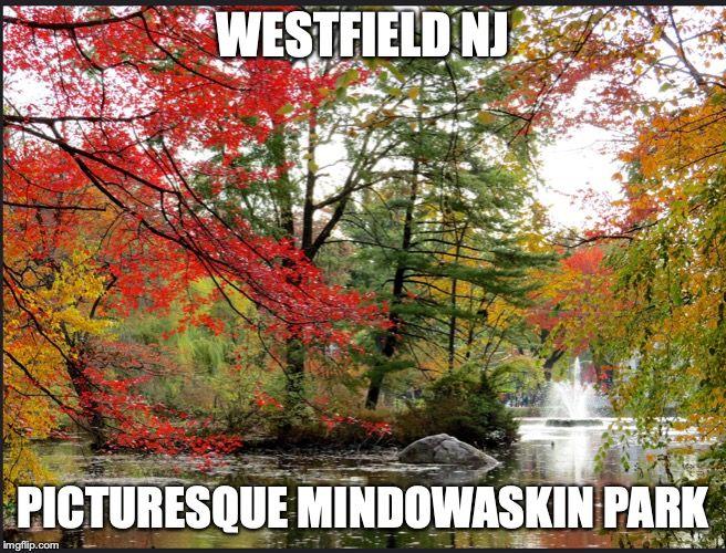 Image tagged in westfield,mindowaskin park Park
