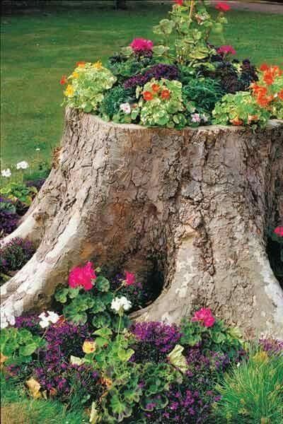 Bahce Saksisi Upcycle Garden Tree Stump Planter Front Yard Landscaping