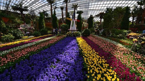 c22adc09e913dfbd3adba1cb15cc8fd3 - Gardens By The Bay Flower Dome Hours