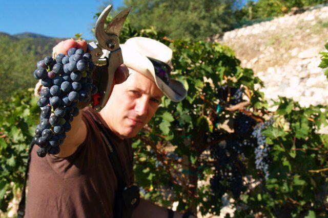 Maynard James Keenan in his wine paradise #Arizona