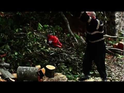 Diren Karadeniz..!(2012) - YouTube