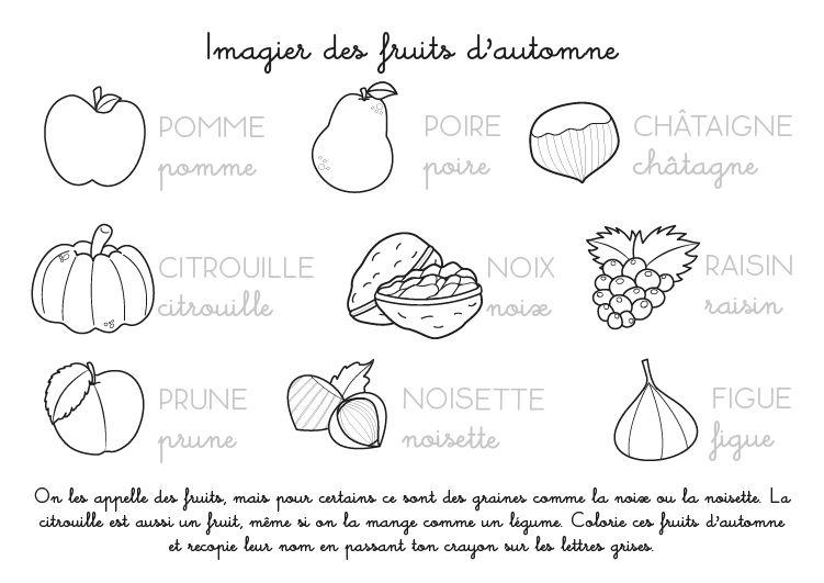 Coloriage imprimer imagier des fruits d 39 automne automne pinterest - Fruits coloriage ...