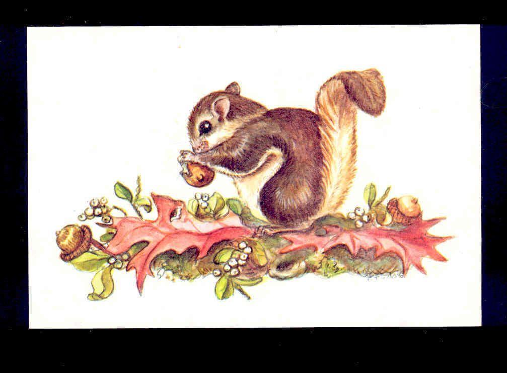 Tasha Tudor Cheery Squirrel Eating Acorn