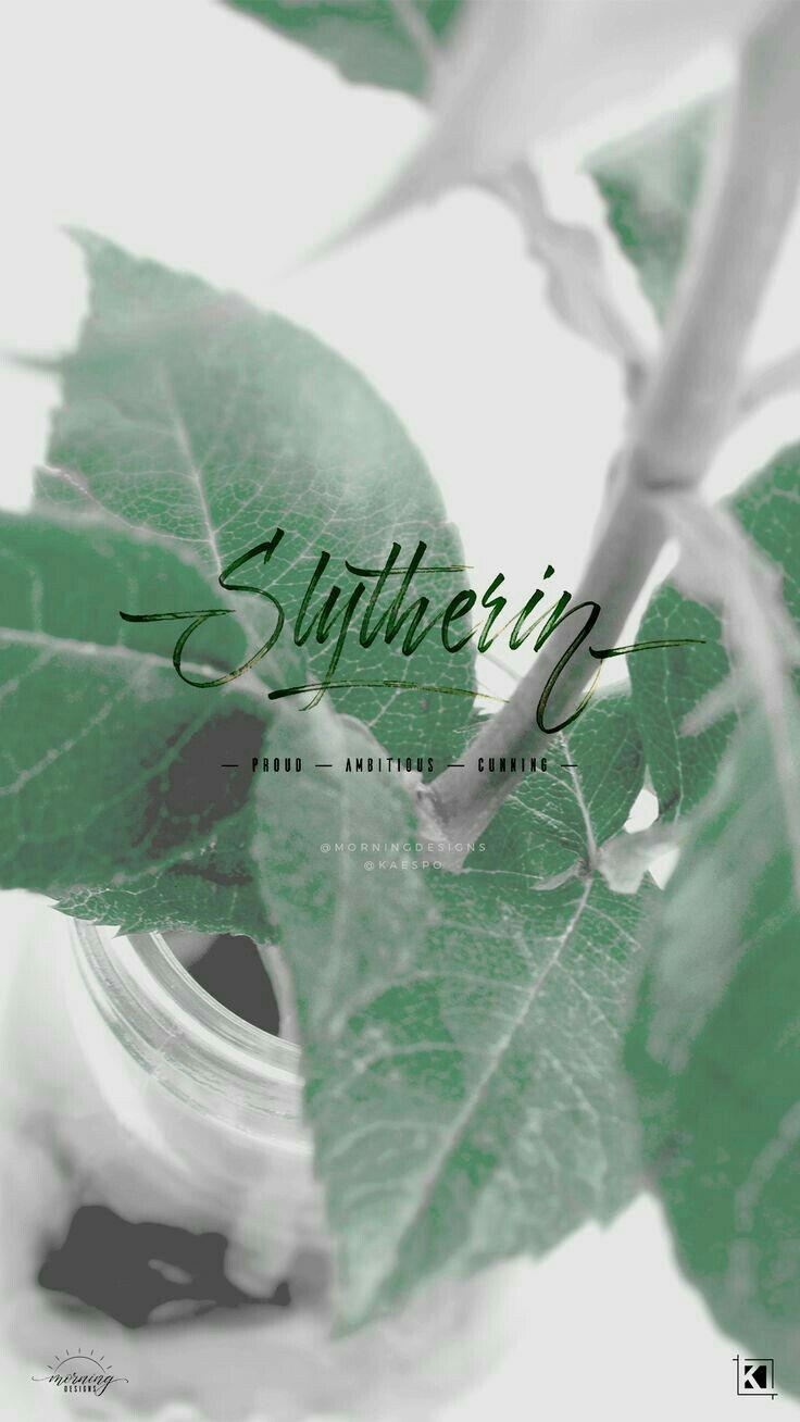 Slytherin Stuff