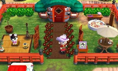 Animal Crossing Happy Home Designer 1