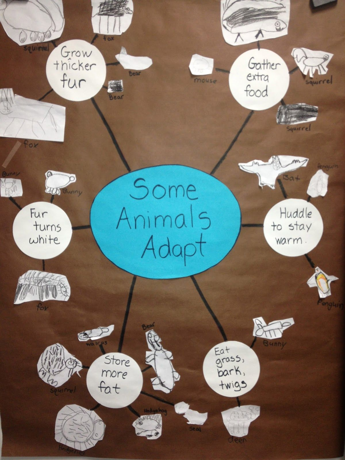 Inquiring Minds: Mrs. Myers\' Kindergarten Animals in Winter- The ...