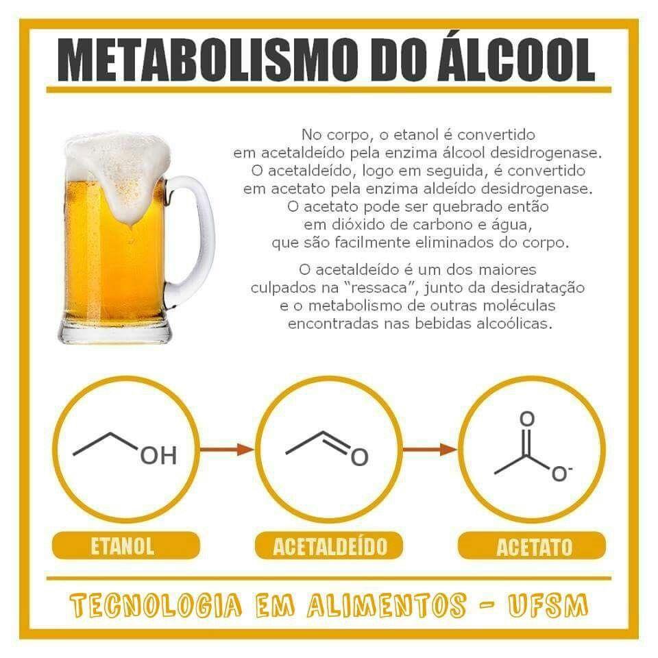 metabolismo de hidratos de carbono métodos de mejora