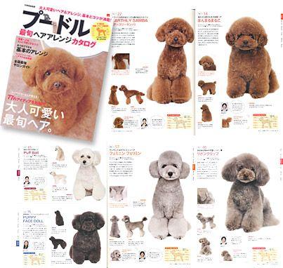 Japanese Grooming Dog Grooming Goldendoodle Grooming Dog Grooming Diy