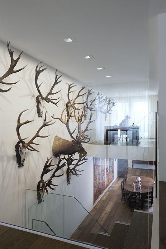 Trophy Room Design Ideas: Architect, Trophy Rooms, Architect Design