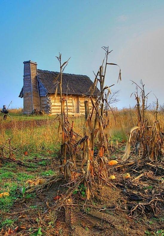 Výsledek obrázku pro cabin in cornfield