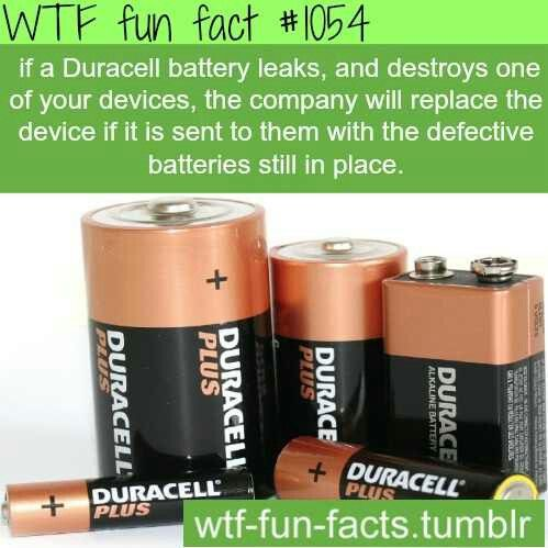 WTF Fun Fact - Duracell battery