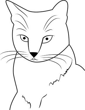 Ausmalbild Katzenkopf Kurzhaarkatze Ausmalbilder katzen