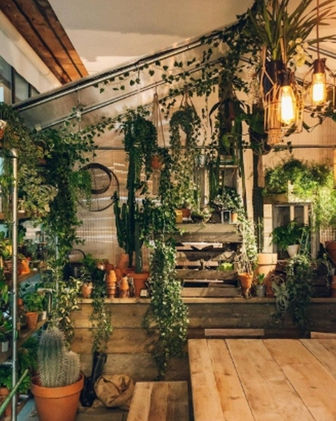 6 Indoor Garden Model Ideas For Tiny Minimalist Homes In 2020 Room With Plants Indoor Jungle Jungle House