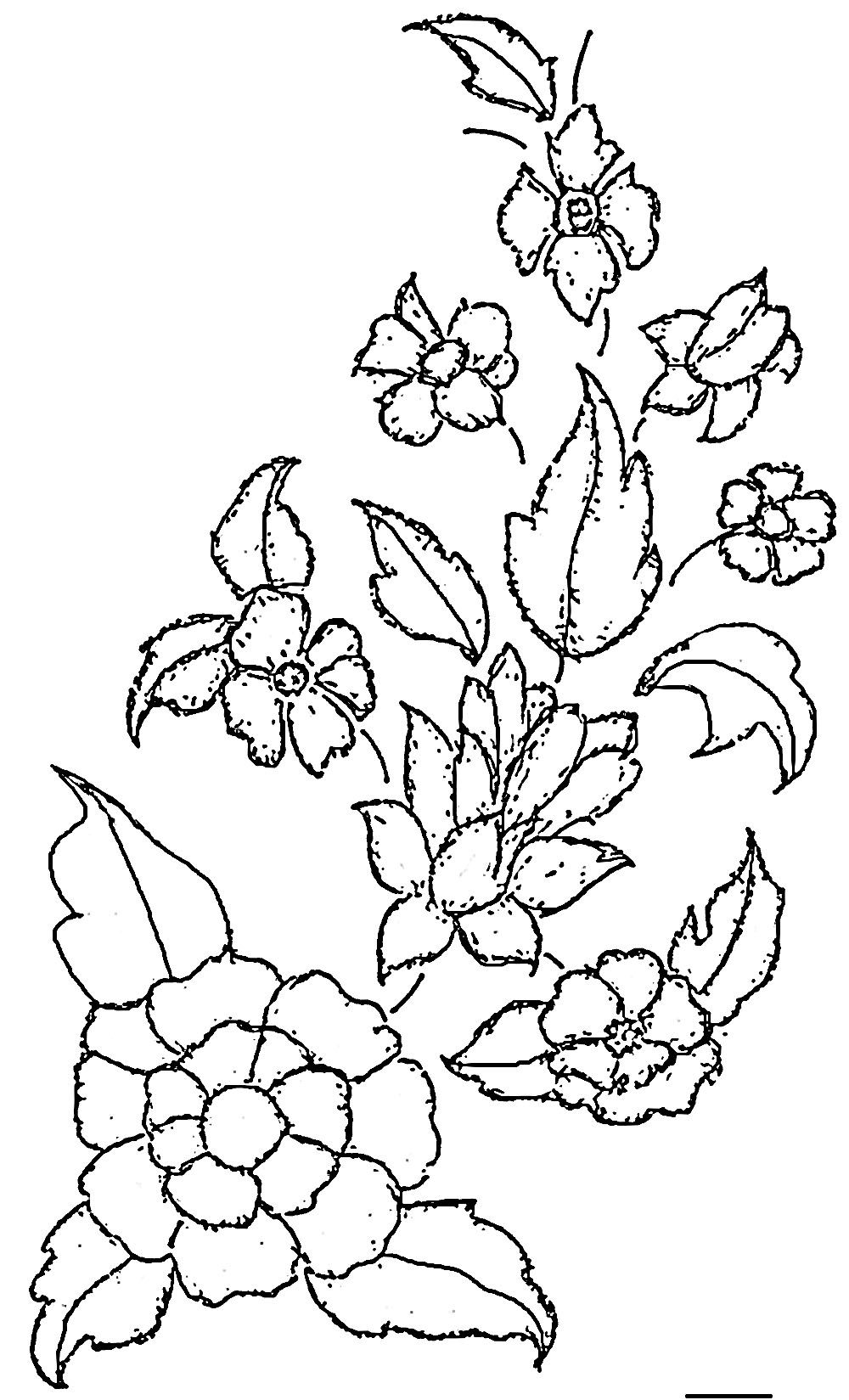 Line Art Aplic Flower Design : Free printable designs glass painting patterns pattern