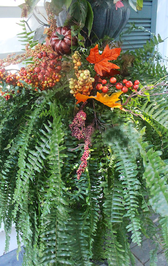 """Just add faux fall """"pics"""" to your summer Boston Fern; instant decor!"""