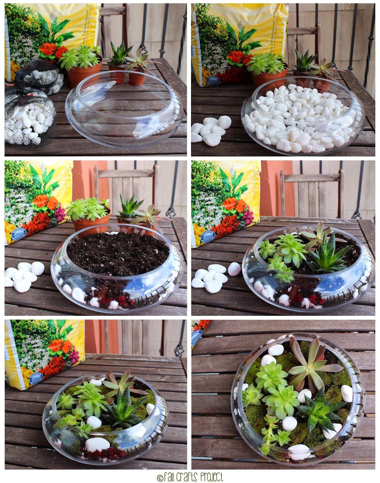 Terrarium originales buscar con google terrarios for Jardines pequenos originales