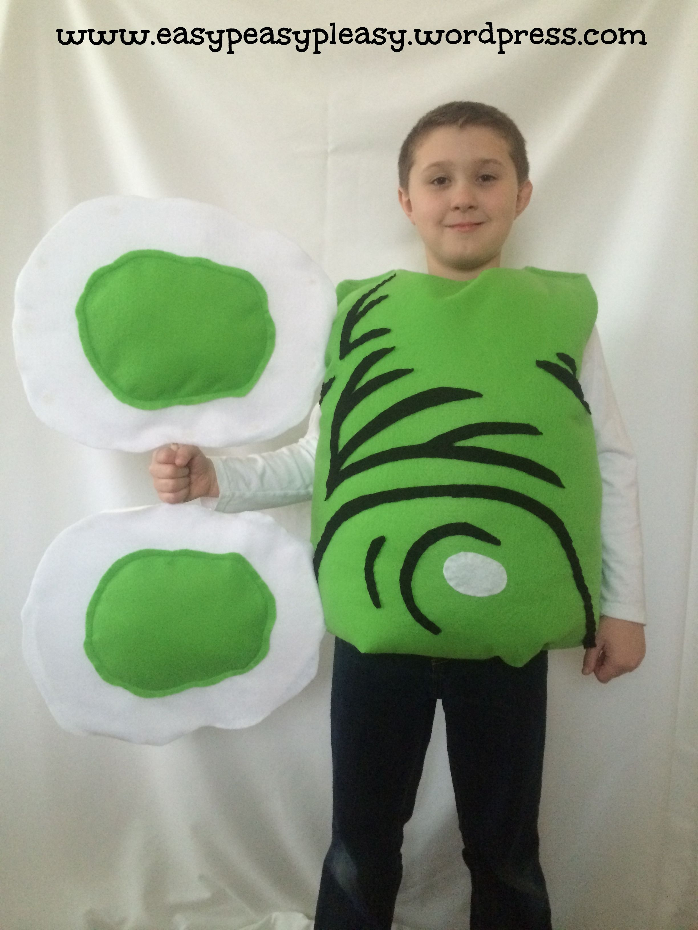 Green Eggs And Ham Costume