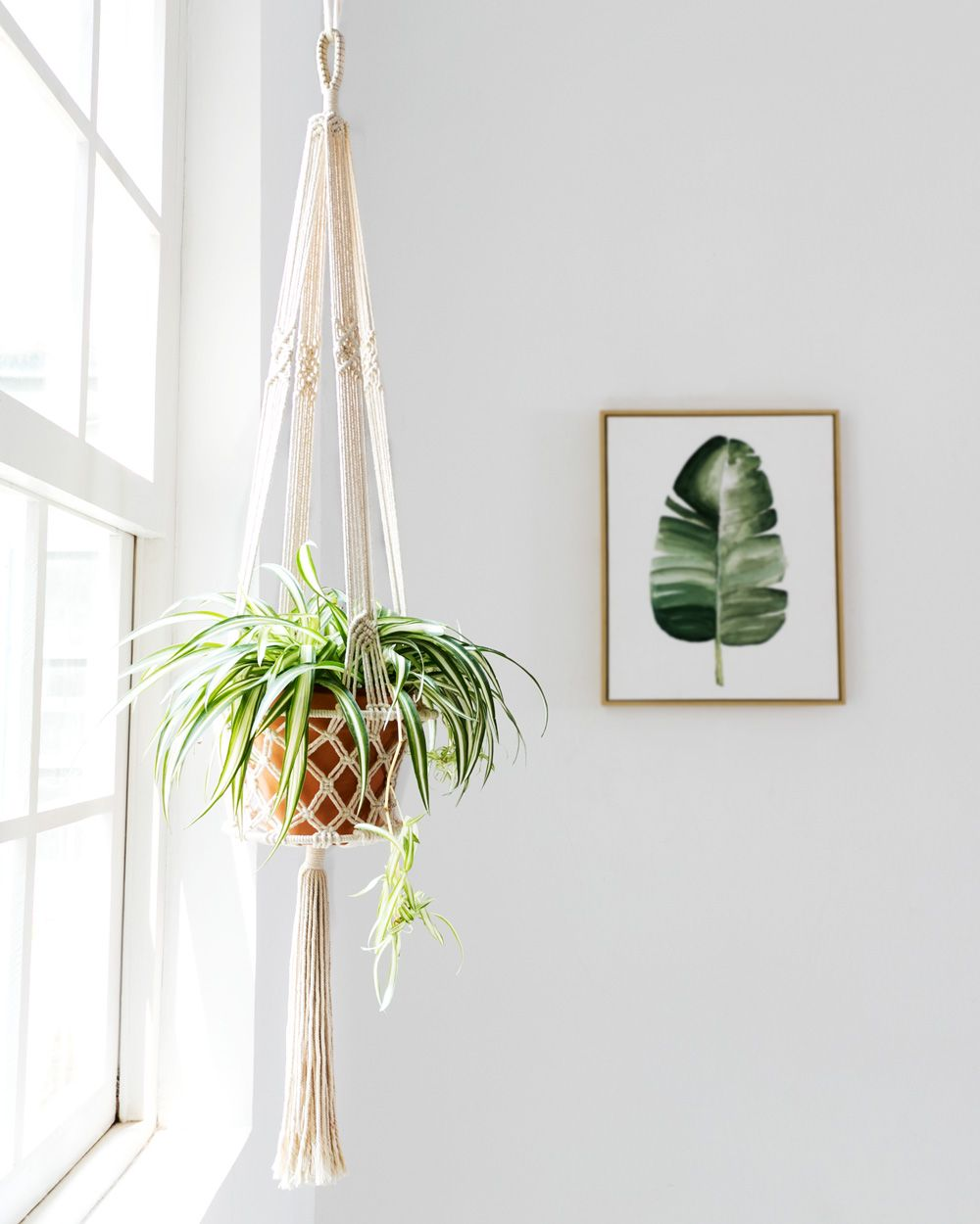Mkono Macrame Hanging Planter Basket Plant Hanger Home Decor Up To 8 Inch Flower Pot Great For Indoor And Ou Plant Hanger Macrame Plant Holder Plant Holders