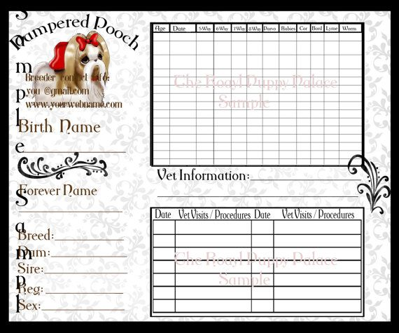 Printed Shih Tzu Customizable Vaccination By Royalspuppyboutique