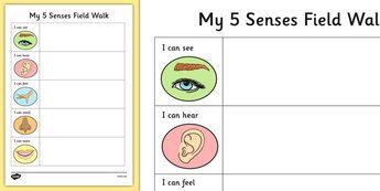Five Senses Field Walk Worksheet - Science, Habitats, Australian ...