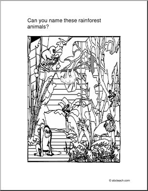 Coloring Page Rain Forest Animals Color this drawing of