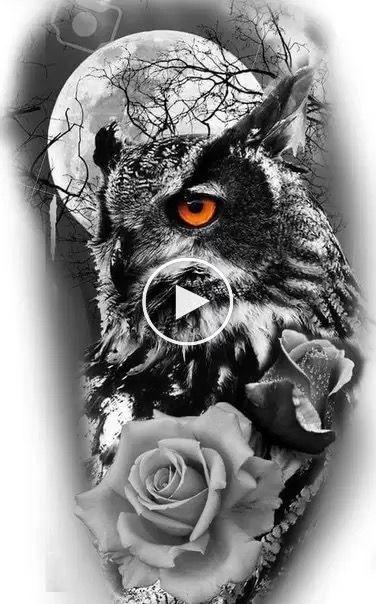 Kaps In 2020 Owl Tattoo Drawings Realistic Owl Tattoo Owl Tattoo