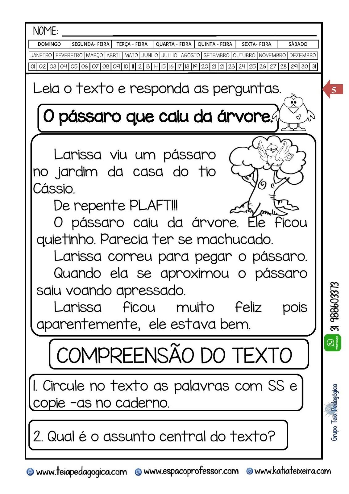 Caderninho O Passaro Que Caiu Do Ninho Bncc Ef03lp01