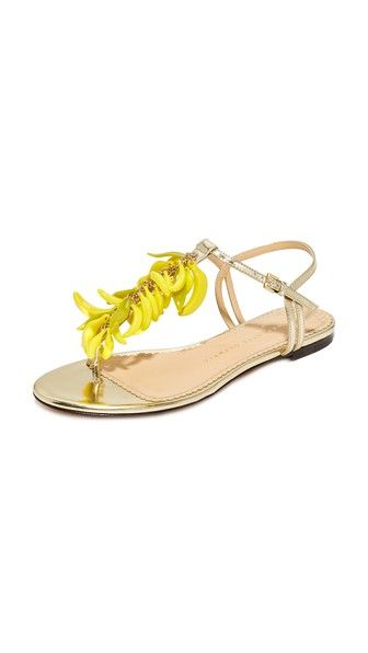 006aba8591a6 Charlotte Olympia Banana Sandals