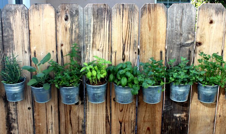 DIY Hanging Fence Herb G DIY Hanging Fence Herb G