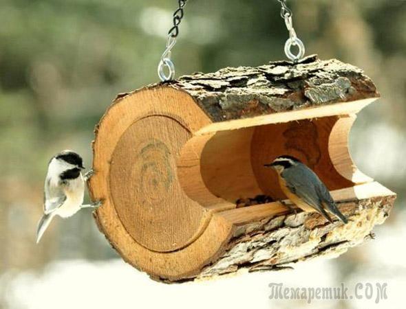 Забавные кормушки для птиц своими руками