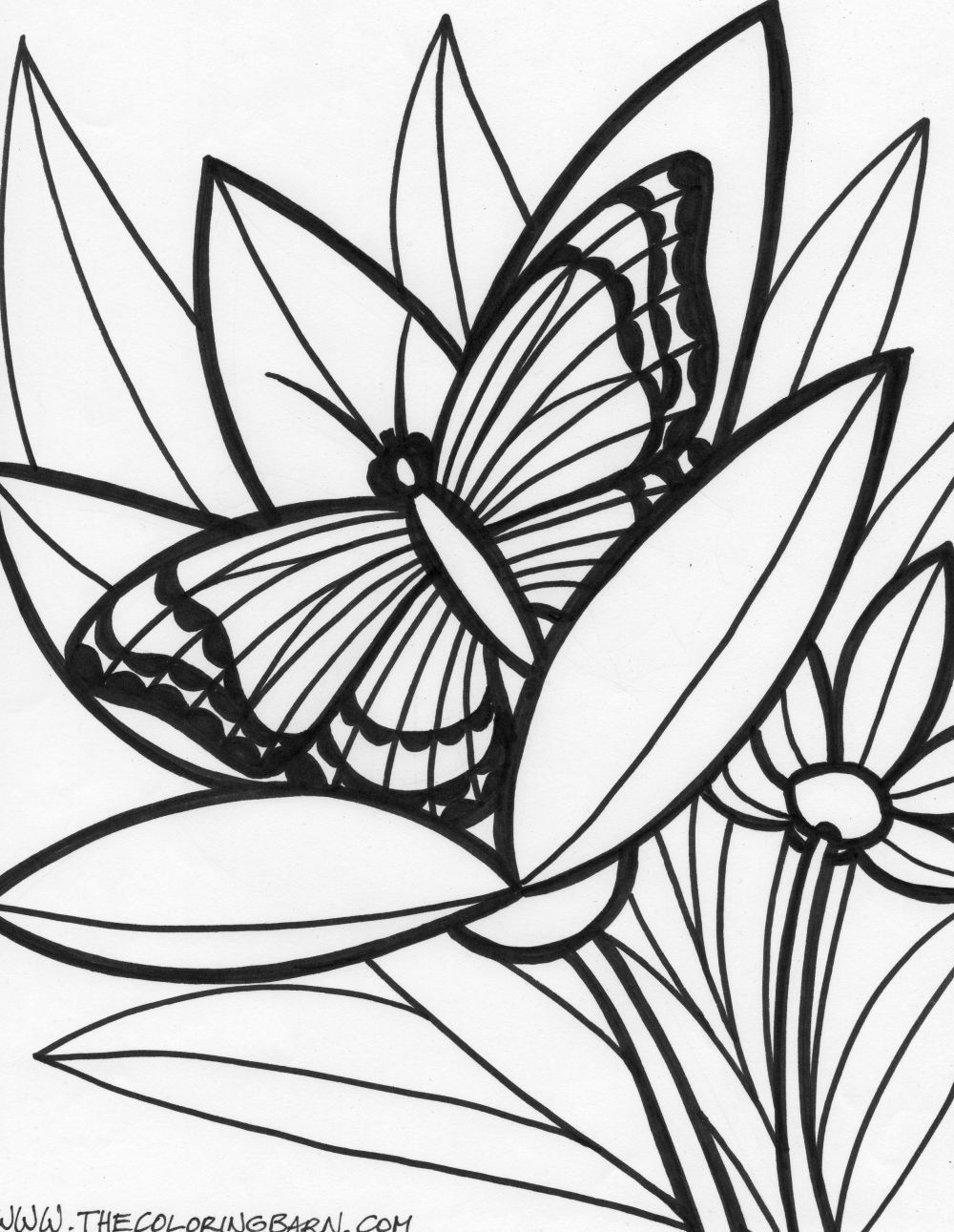 Jungle Coloring Pages Coloring Pages Of Jungle Animals Rainforest ...