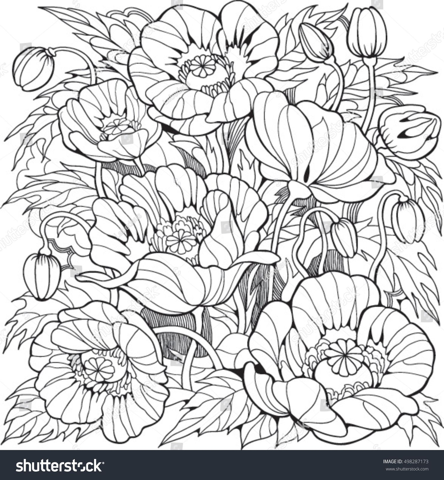 Poppy flowers. Coloring page for adult and older children ...