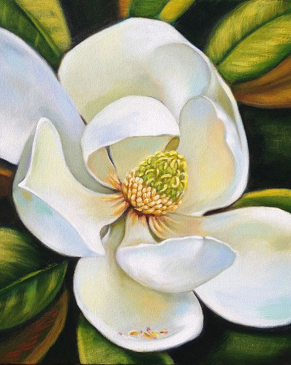 Magnolia painting original Southern art by Robyn by ...