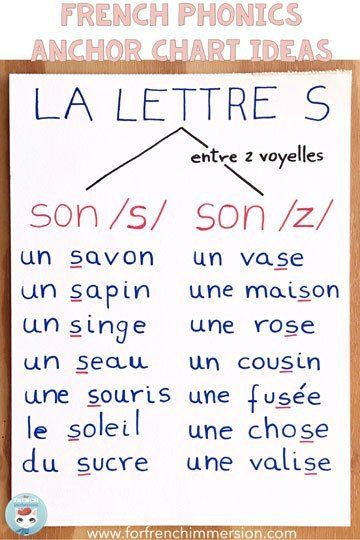 La lettre S: le son /s/ et le son /z/ French Phonics Anchor Charts Ideas. You might know them as