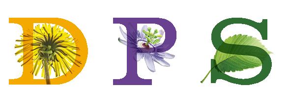 Plant Personality Quiz Slippery Elm Plants Passion Flower