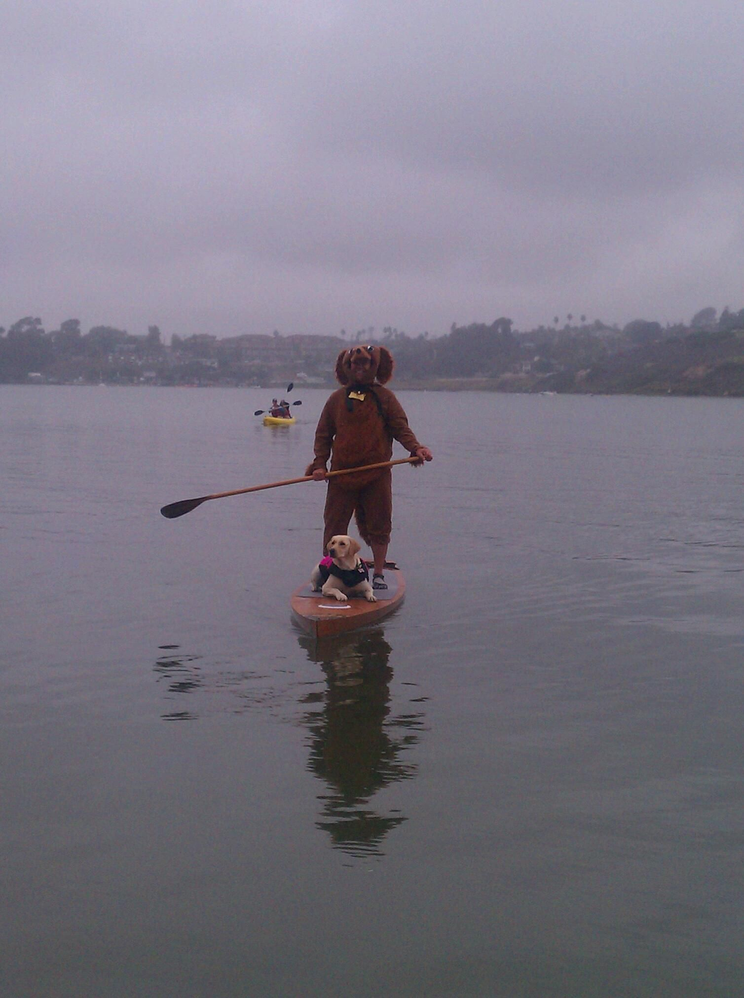 Guy In A Dog Suit And His Dog On Halloween On A Sup At Carlsbad
