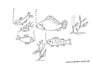 Schablonen Ausmalen Aquarium Fische Schablonen Pinterest