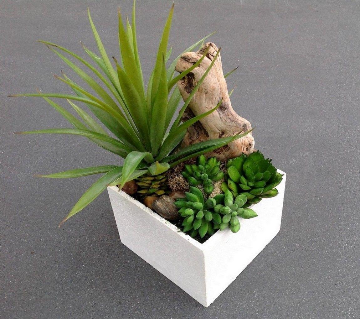 Pot plantes grasses artificielles ero cloche et vases for Mini plante verte